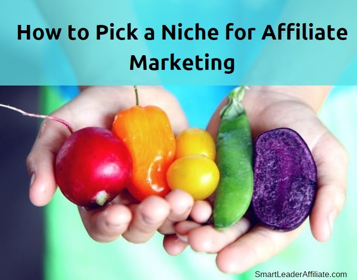 How to pick a niche for affiliate marketing